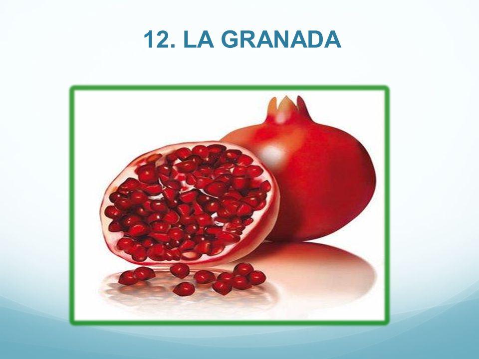 12. LA GRANADA