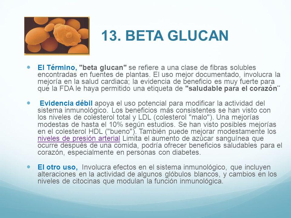13. bETA GLUCAN