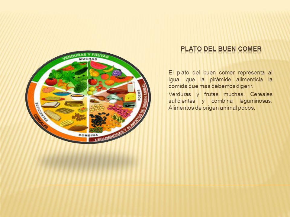 Plato del buen comerEl plato del buen comer representa al igual que la pirámide alimenticia la comida que mas debemos digerir.