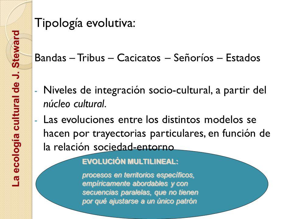 Tipología evolutiva: Bandas – Tribus – Cacicatos – Señoríos – Estados