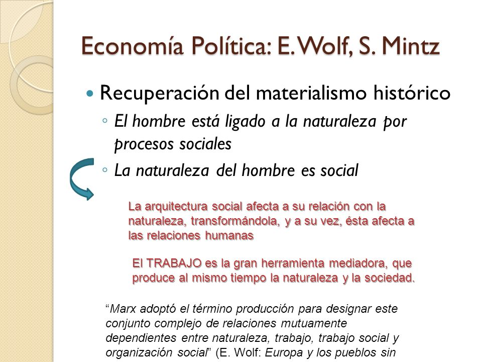 Economía Política: E. Wolf, S. Mintz