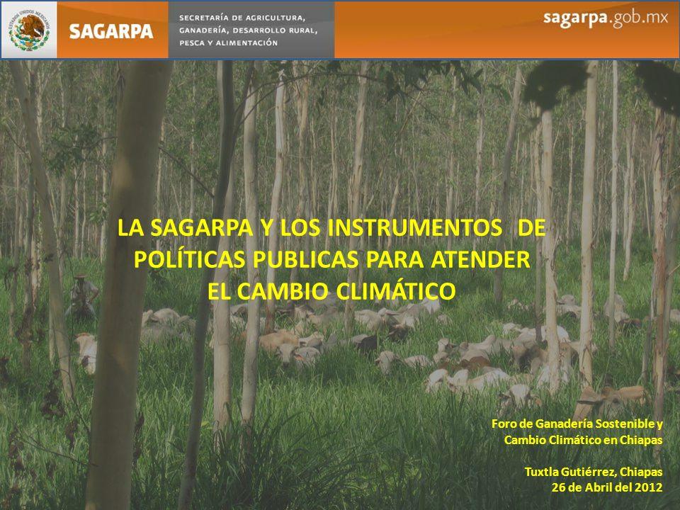 LA SAGARPA Y LOS INSTRUMENTOS DE POLÍTICAS PUBLICAS PARA ATENDER