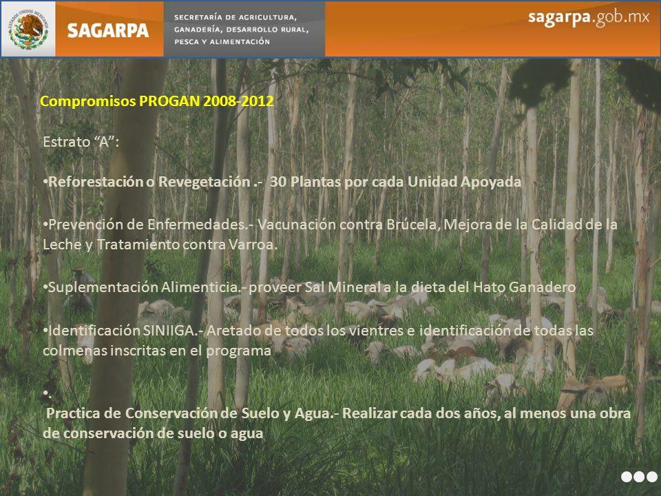 Compromisos PROGAN 2008-2012 Estrato A : Reforestación o Revegetación .- 30 Plantas por cada Unidad Apoyada.