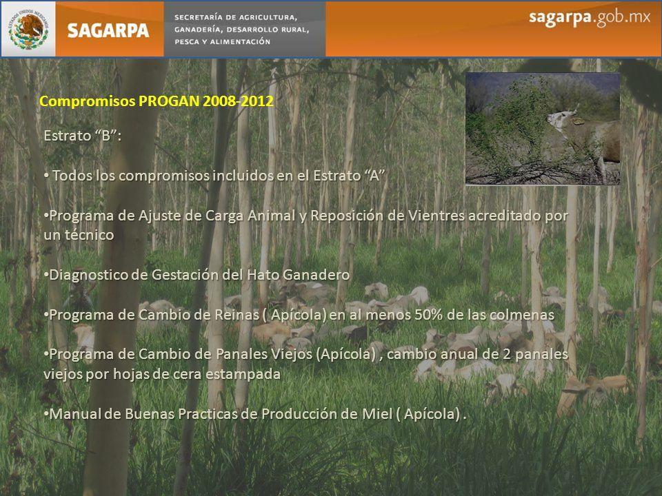 Compromisos PROGAN 2008-2012 Estrato B : Todos los compromisos incluidos en el Estrato A