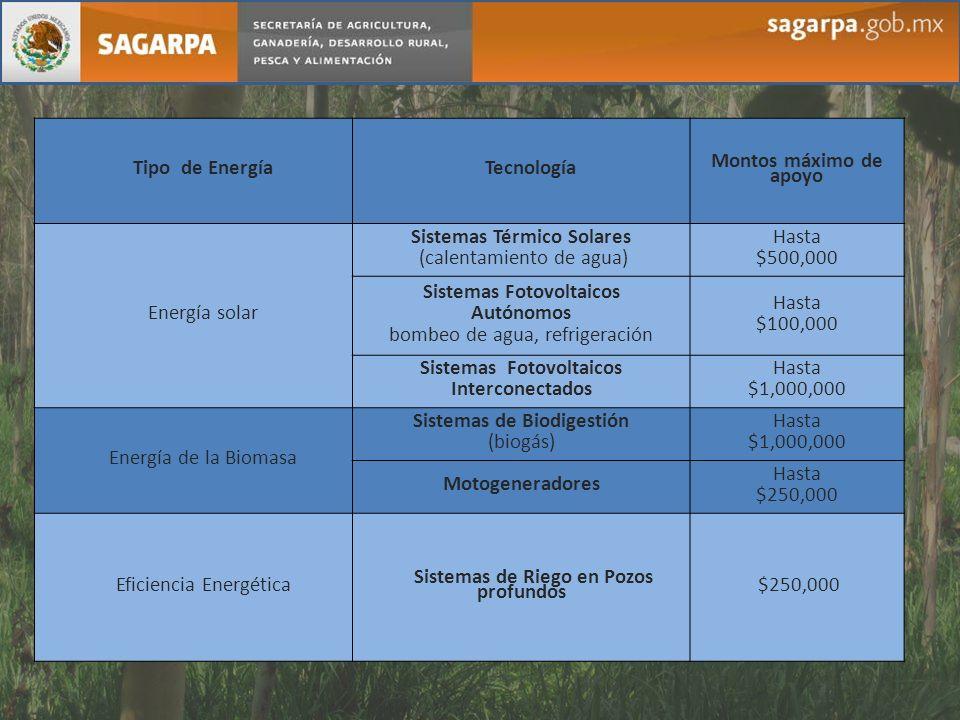 Sistemas Térmico Solares (calentamiento de agua) Hasta $500,000
