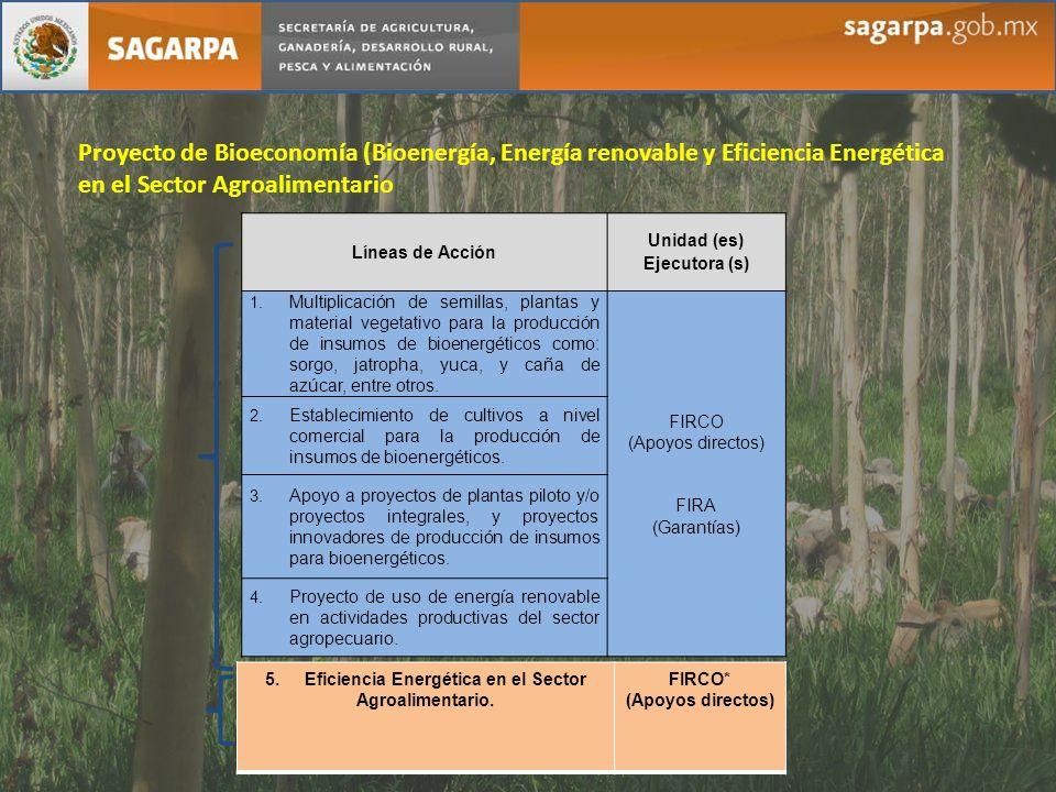 5. Eficiencia Energética en el Sector Agroalimentario.