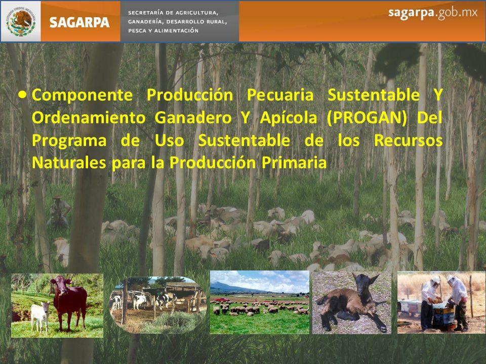 Componente Producción Pecuaria Sustentable Y Ordenamiento Ganadero Y Apícola (PROGAN) Del Programa de Uso Sustentable de los Recursos Naturales para la Producción Primaria
