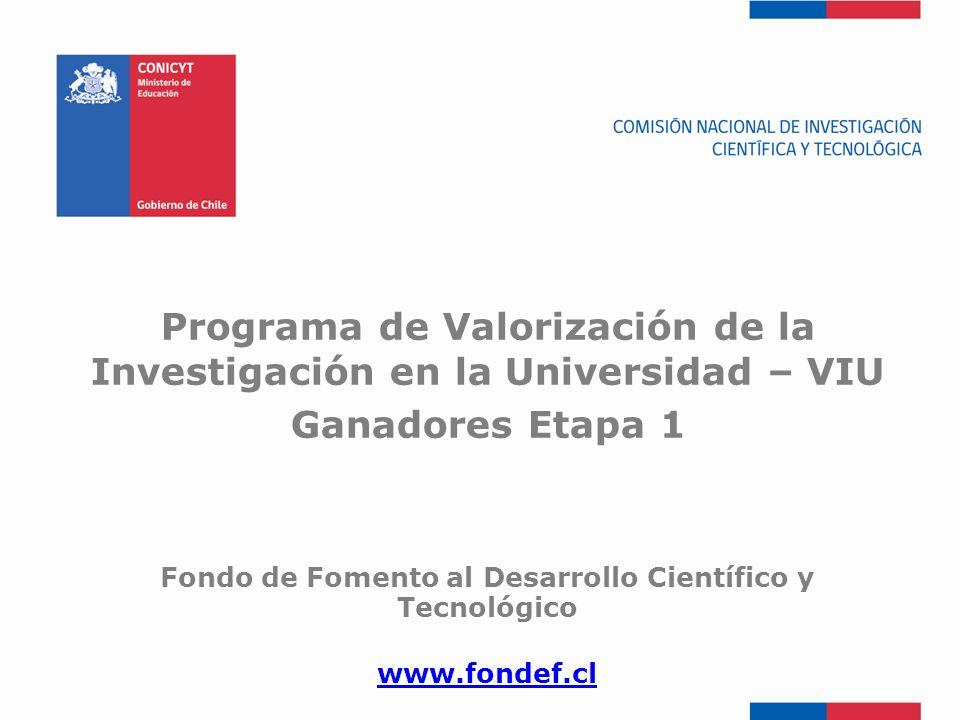 Programa de Valorización de la Investigación en la Universidad – VIU