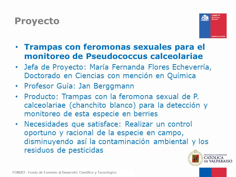 Proyecto Trampas con feromonas sexuales para el monitoreo de Pseudococcus calceolariae.