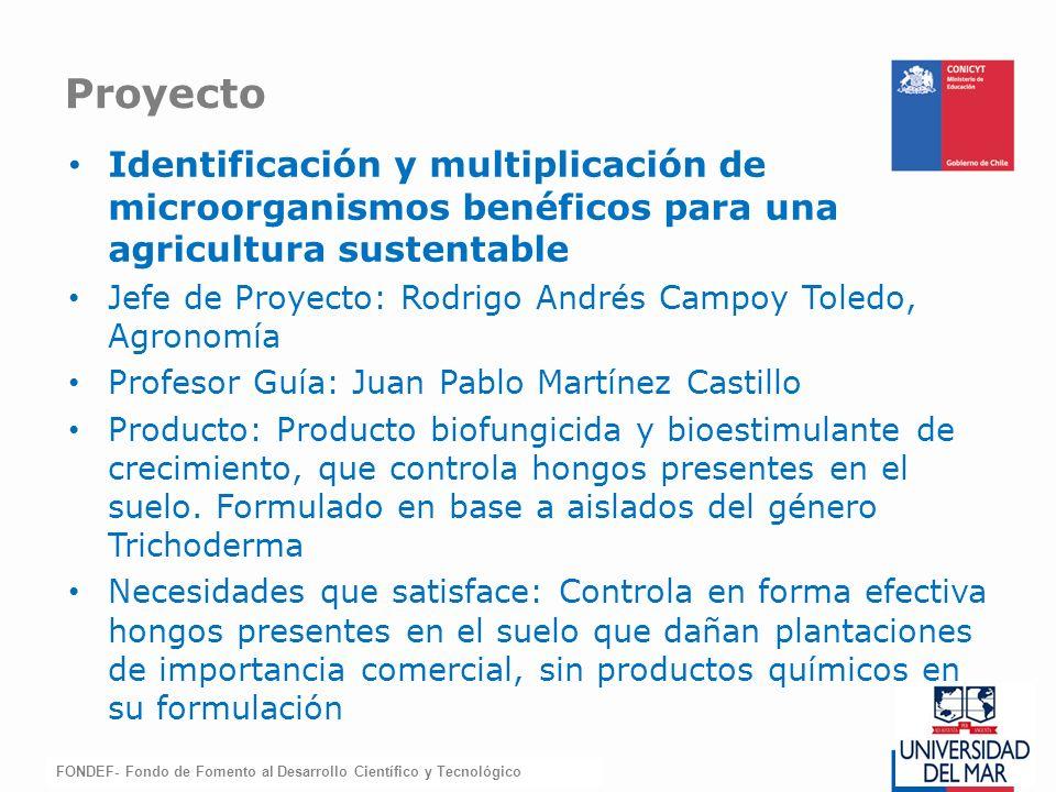 Proyecto Identificación y multiplicación de microorganismos benéficos para una agricultura sustentable.