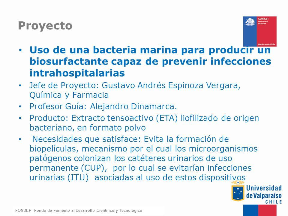 Proyecto Uso de una bacteria marina para producir un biosurfactante capaz de prevenir infecciones intrahospitalarias.