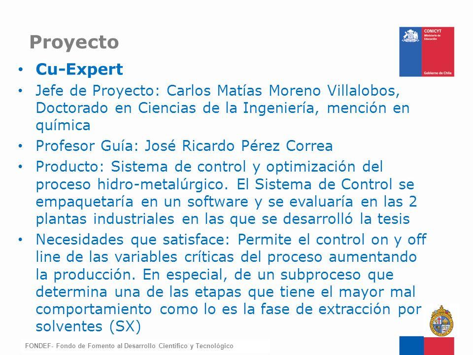 Proyecto Cu-Expert. Jefe de Proyecto: Carlos Matías Moreno Villalobos, Doctorado en Ciencias de la Ingeniería, mención en química.