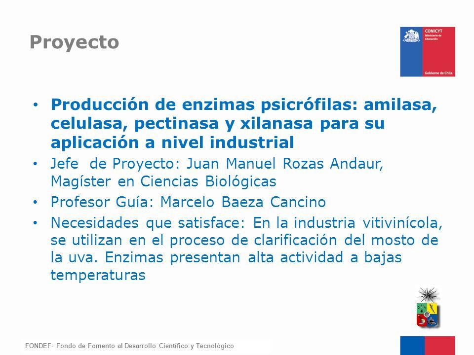 Proyecto Producción de enzimas psicrófilas: amilasa, celulasa, pectinasa y xilanasa para su aplicación a nivel industrial.