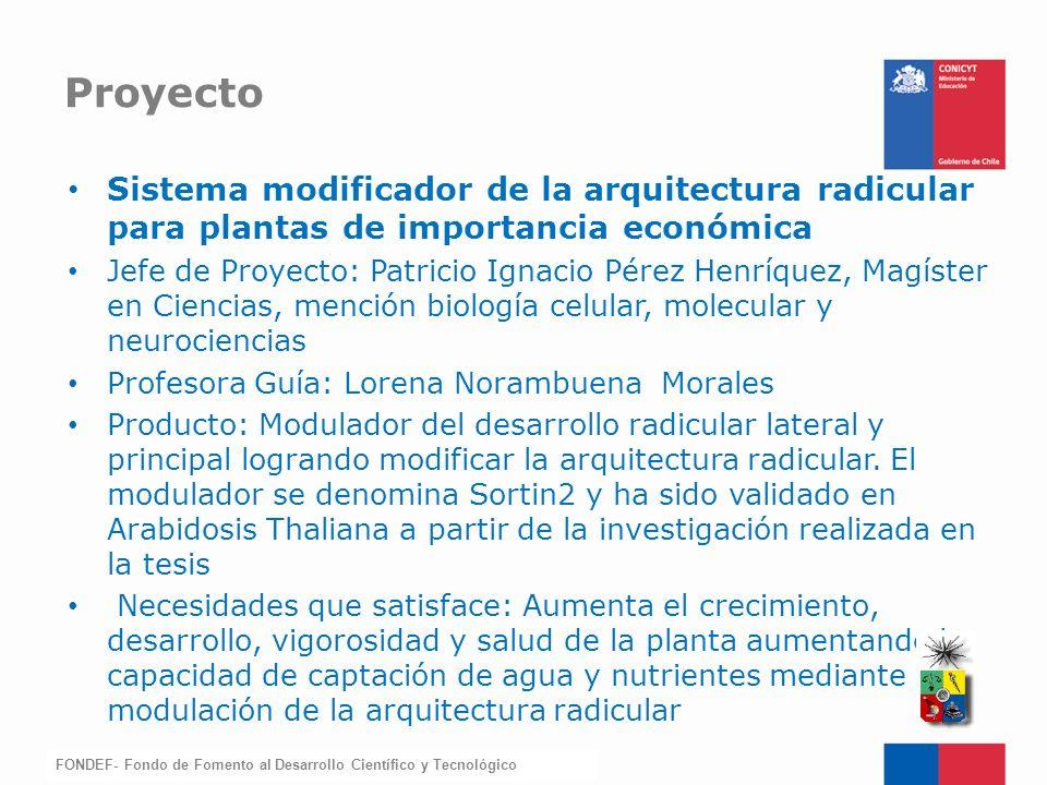 Proyecto Sistema modificador de la arquitectura radicular para plantas de importancia económica.