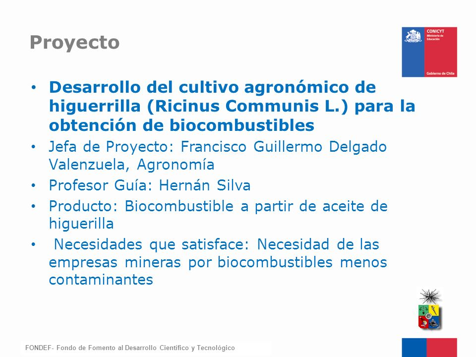 Proyecto Desarrollo del cultivo agronómico de higuerrilla (Ricinus Communis L.) para la obtención de biocombustibles.