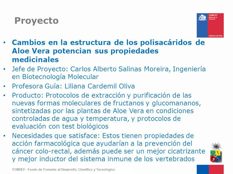 Proyecto Cambios en la estructura de los polisacáridos de Aloe Vera potencian sus propiedades medicinales.
