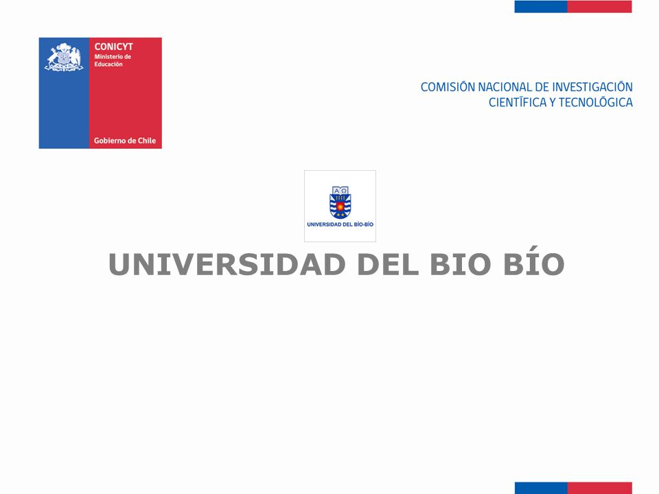 UNIVERSIDAD DEL BIO BÍO