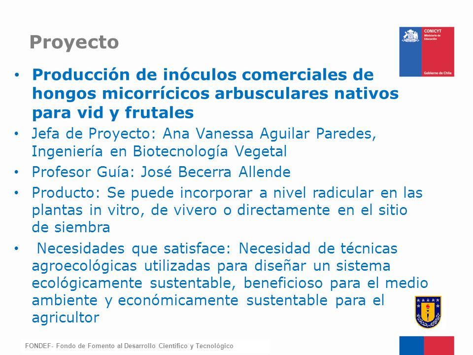 Proyecto Producción de inóculos comerciales de hongos micorrícicos arbusculares nativos para vid y frutales.