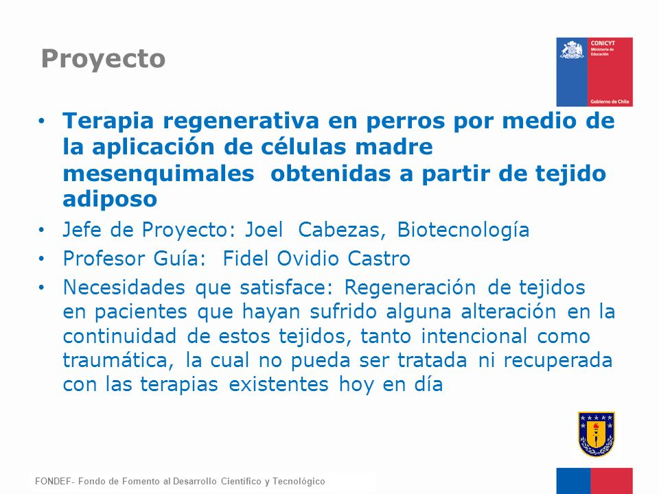 Proyecto Terapia regenerativa en perros por medio de la aplicación de células madre mesenquimales obtenidas a partir de tejido adiposo.