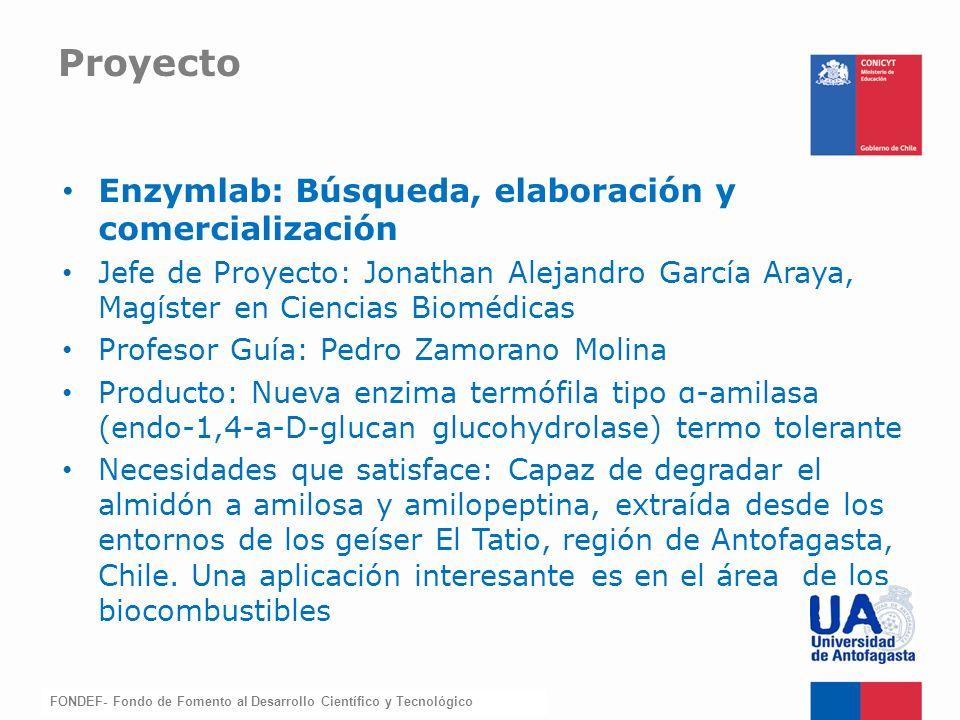 Proyecto Enzymlab: Búsqueda, elaboración y comercialización
