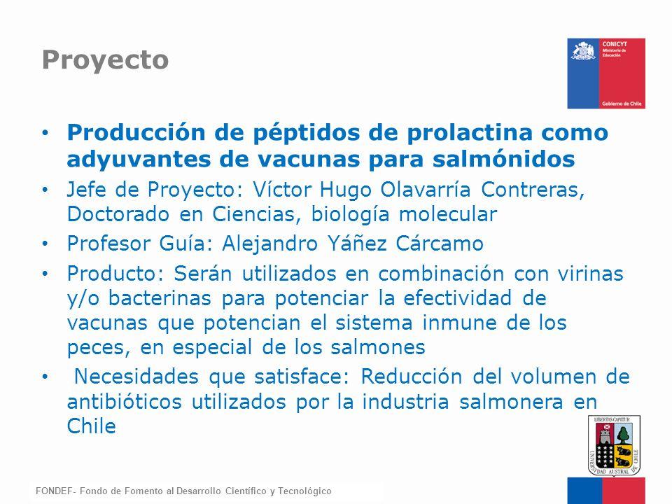Proyecto Producción de péptidos de prolactina como adyuvantes de vacunas para salmónidos.