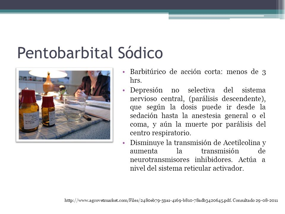 Pentobarbital Sódico Barbitúrico de acción corta: menos de 3 hrs.