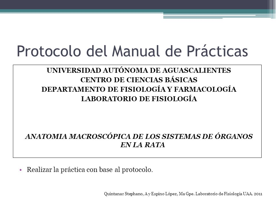 Protocolo del Manual de Prácticas