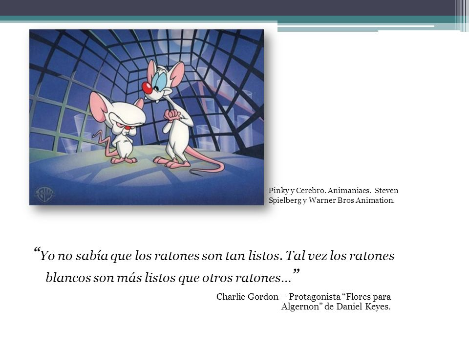 Pinky y Cerebro. Animaniacs. Steven Spielberg y Warner Bros Animation.