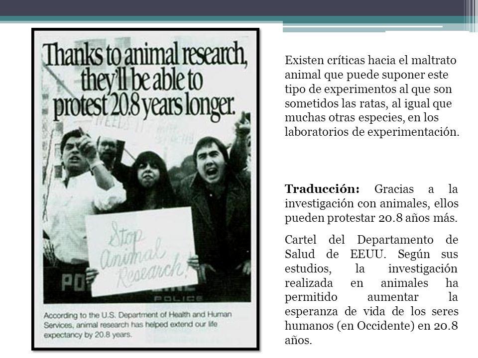 Existen críticas hacia el maltrato animal que puede suponer este tipo de experimentos al que son sometidos las ratas, al igual que muchas otras especies, en los laboratorios de experimentación.