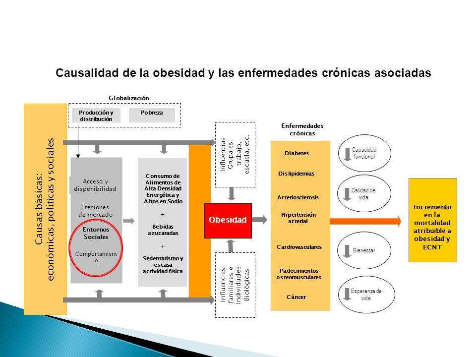 Causalidad de la obesidad y las enfermedades crónicas asociadas