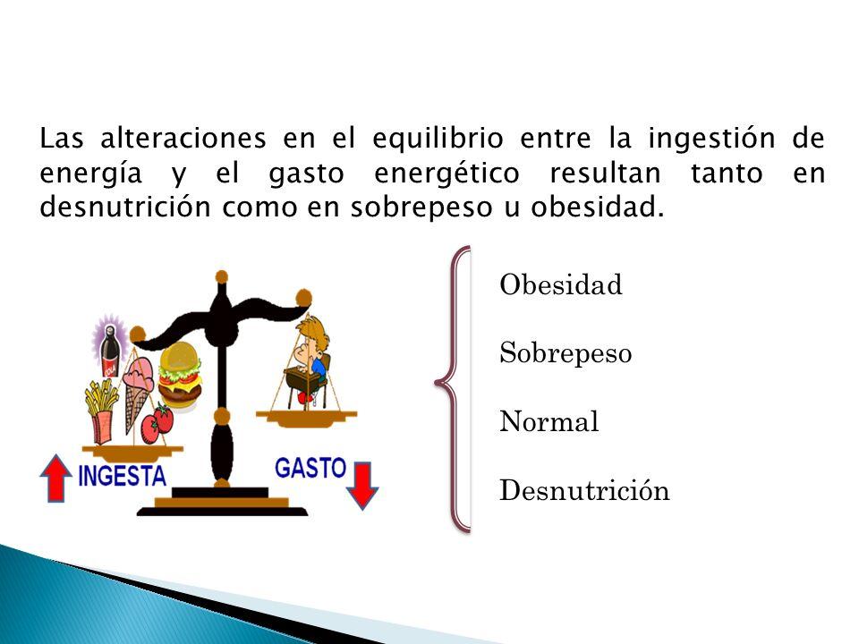 Las alteraciones en el equilibrio entre la ingestión de energía y el gasto energético resultan tanto en desnutrición como en sobrepeso u obesidad.