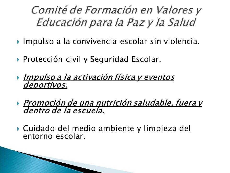 Comité de Formación en Valores y Educación para la Paz y la Salud
