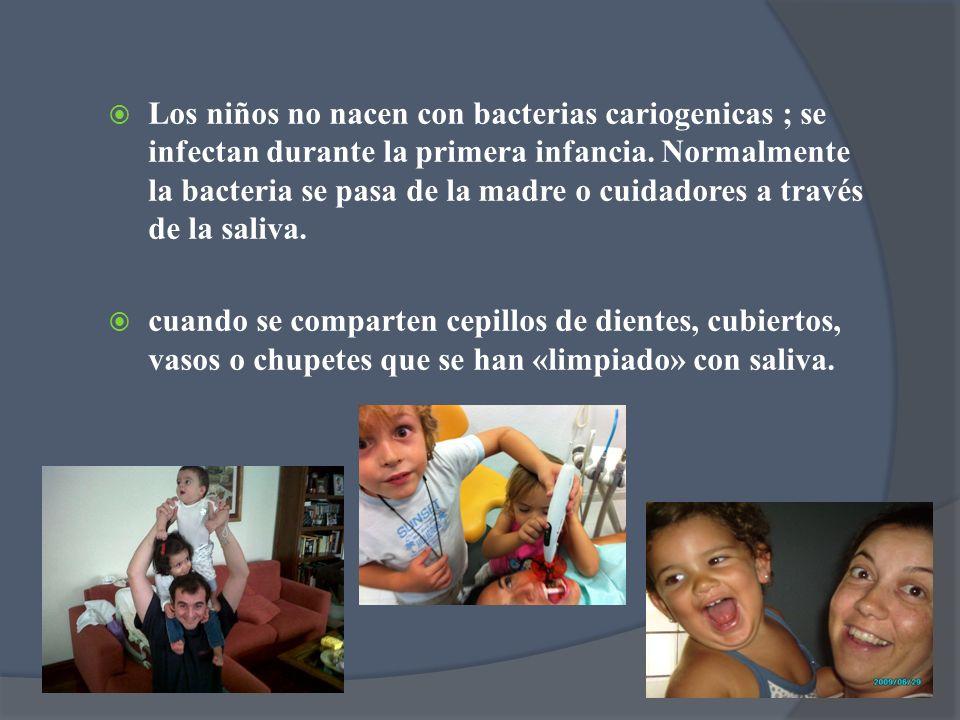 Los niños no nacen con bacterias cariogenicas ; se infectan durante la primera infancia. Normalmente la bacteria se pasa de la madre o cuidadores a través de la saliva.