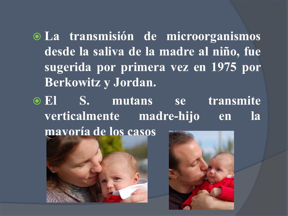 La transmisión de microorganismos desde la saliva de la madre al niño, fue sugerida por primera vez en 1975 por Berkowitz y Jordan.