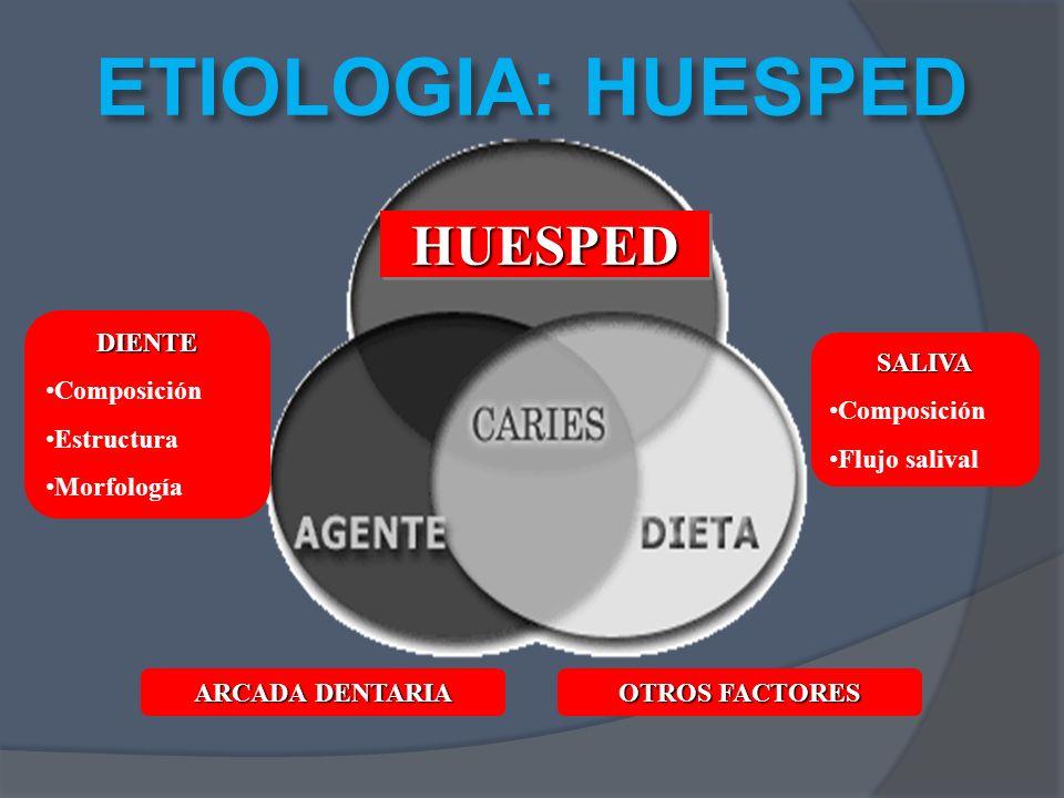 ETIOLOGIA: HUESPED HUESPED DIENTE Composición Estructura Morfología