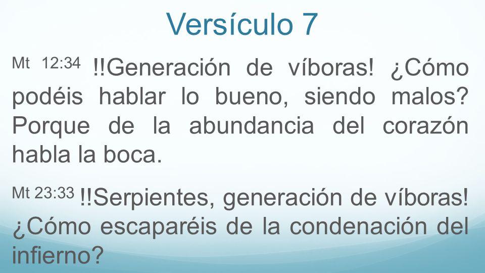 Versículo 7