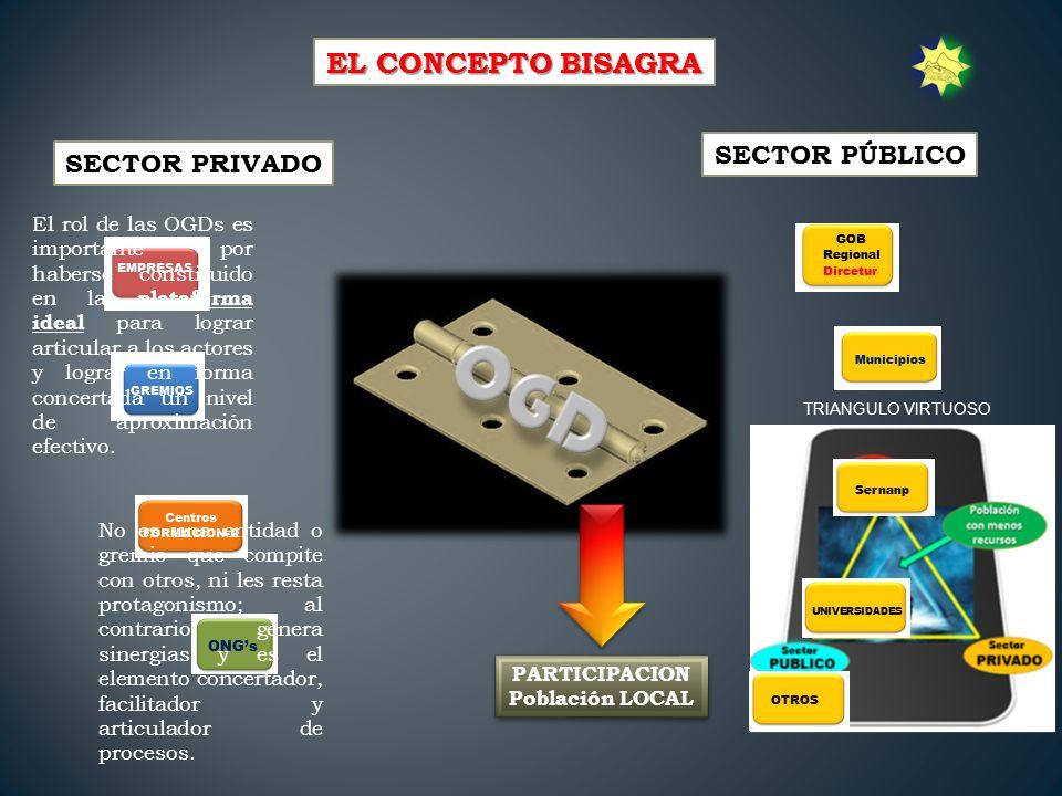 EL CONCEPTO BISAGRA SECTOR PÚBLICO SECTOR PRIVADO