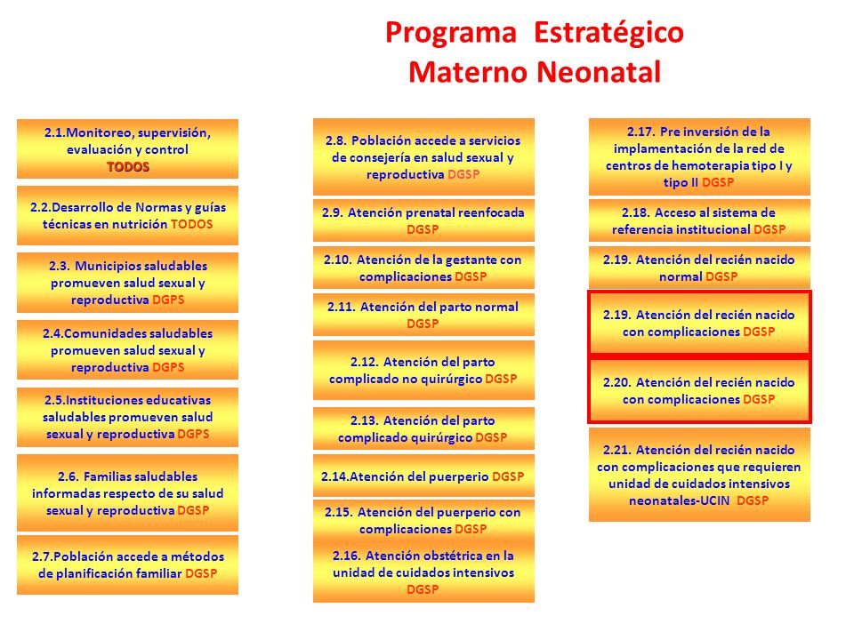 Programa Estratégico Materno Neonatal