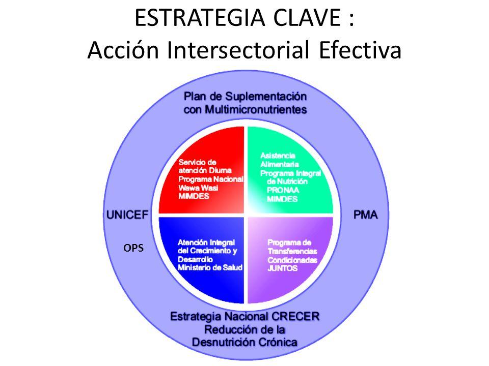 ESTRATEGIA CLAVE : Acción Intersectorial Efectiva