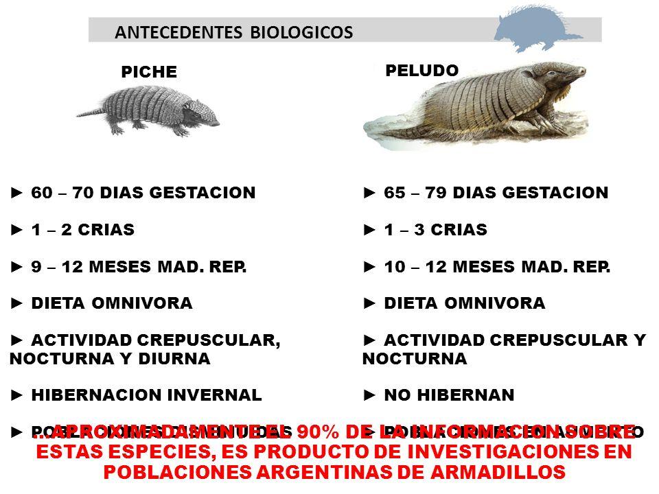ANTECEDENTES BIOLOGICOS