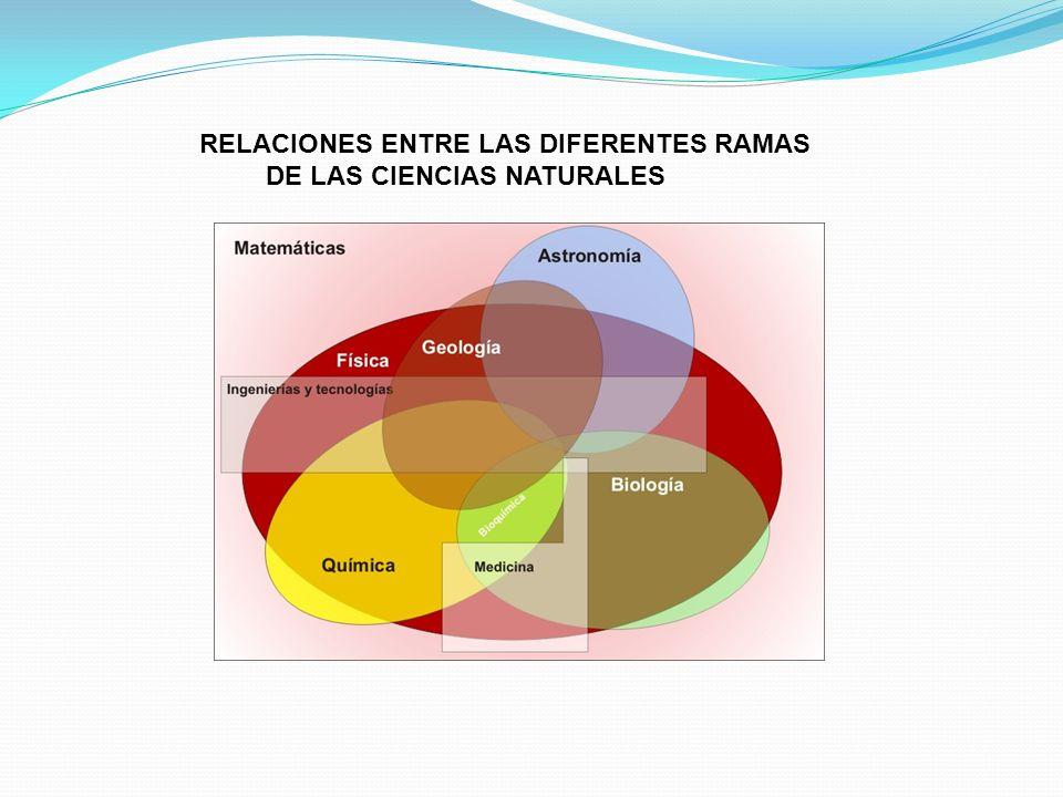 RELACIONES ENTRE LAS DIFERENTES RAMAS