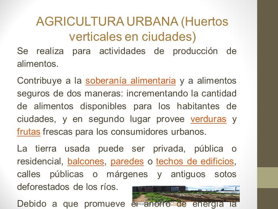 AGRICULTURA URBANA (Huertos verticales en ciudades)