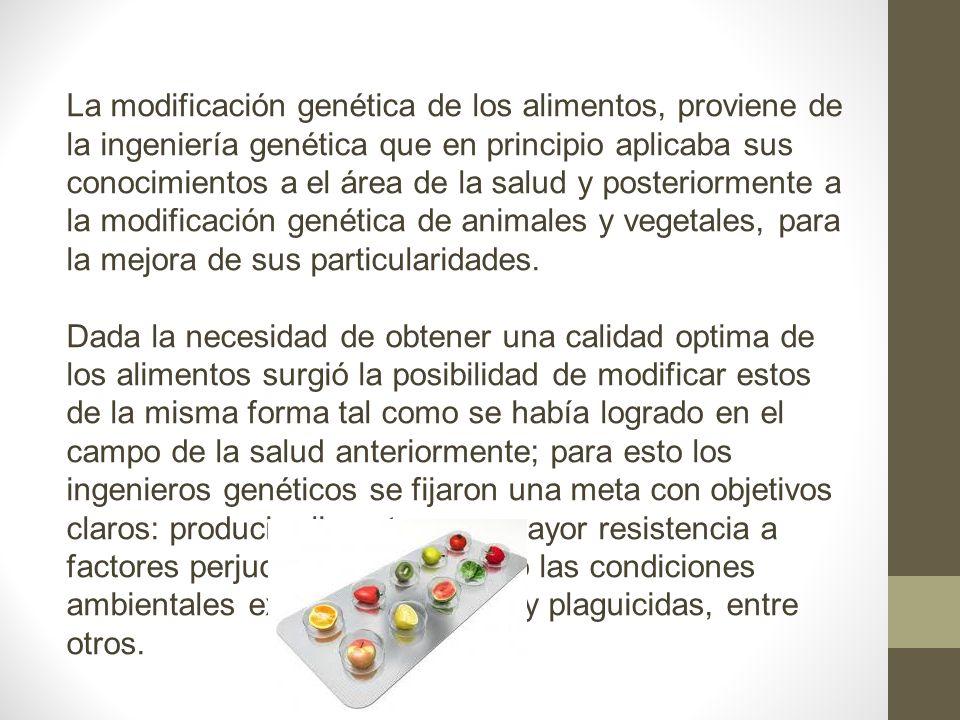 La modificación genética de los alimentos, proviene de la ingeniería genética que en principio aplicaba sus conocimientos a el área de la salud y posteriormente a la modificación genética de animales y vegetales, para la mejora de sus particularidades.