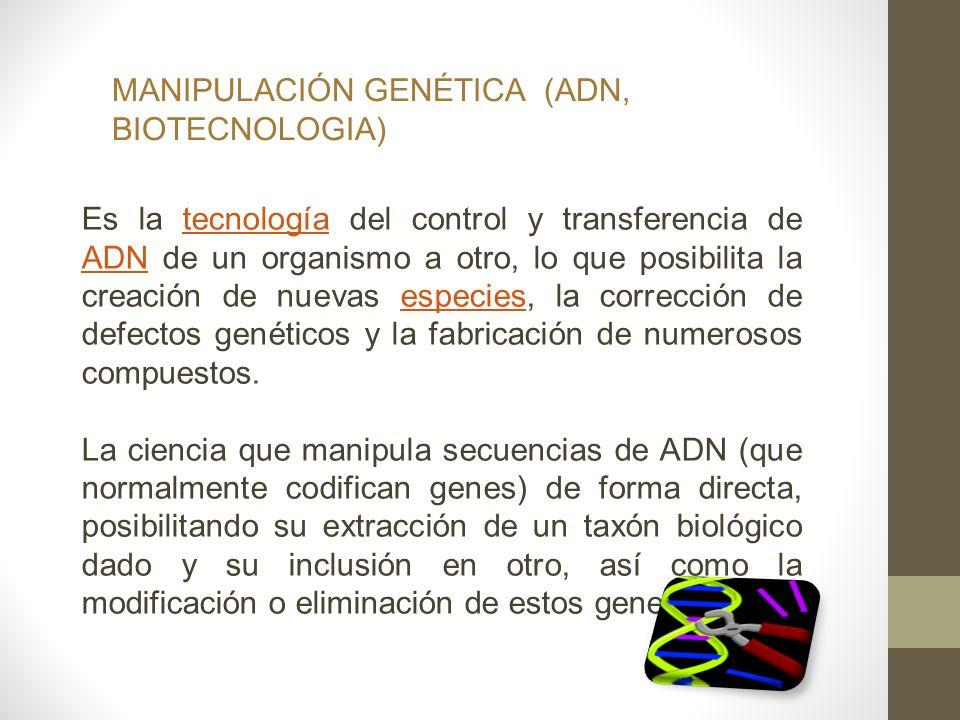 MANIPULACIÓN GENÉTICA (ADN, BIOTECNOLOGIA)