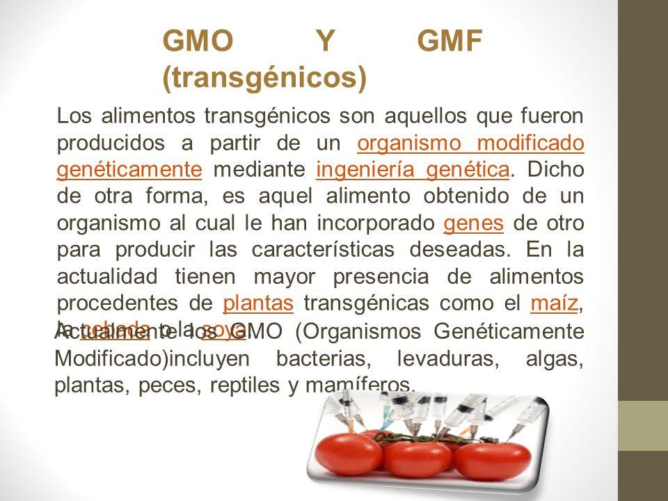 GMO Y GMF (transgénicos)