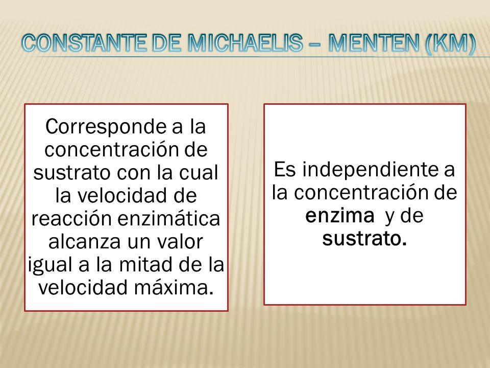 Constante de Michaelis – Menten (Km)