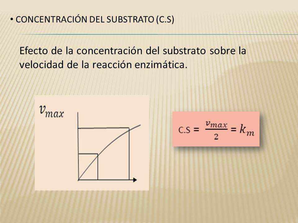 CONCENTRACIÓN DEL SUBSTRATO (C.S)