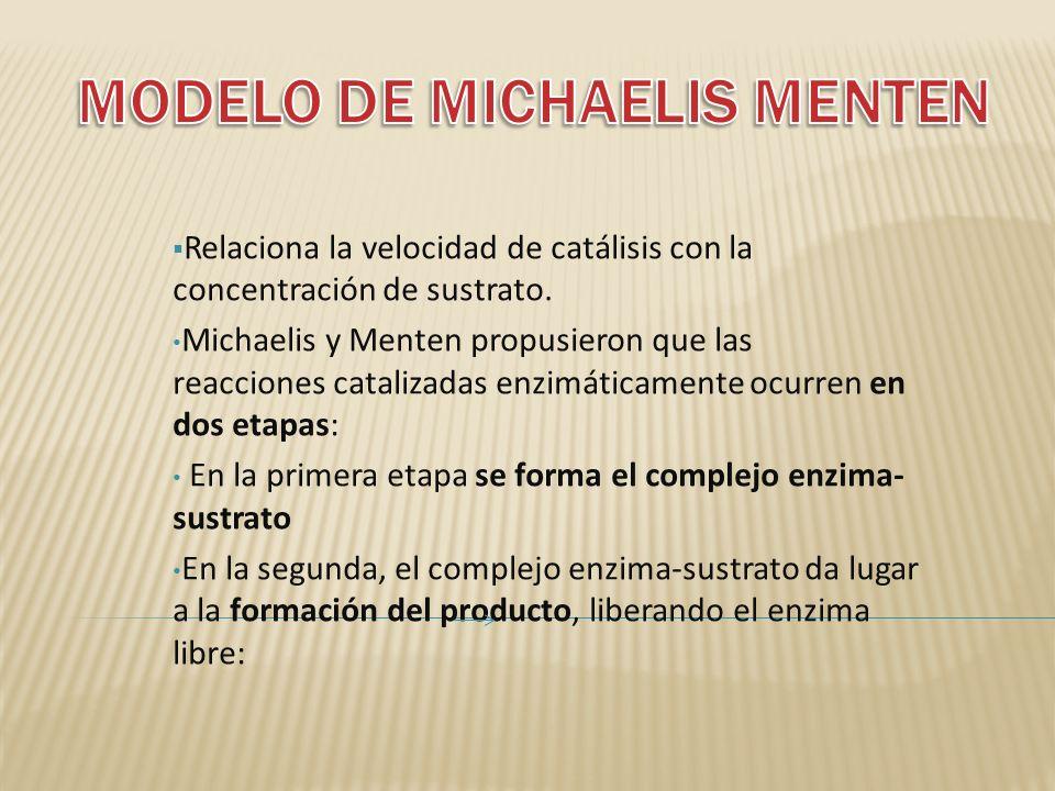 MODELO DE MICHAELIS MENTEN