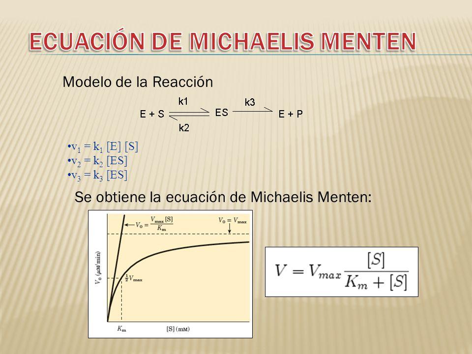 ECUACIÓN DE MICHAELIS MENTEN