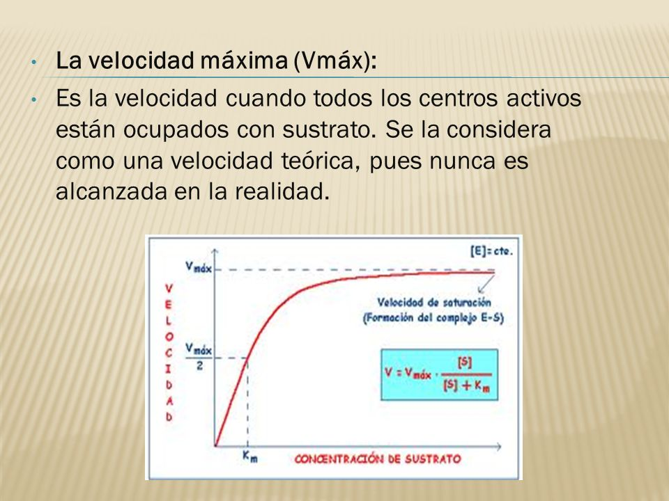 La velocidad máxima (Vmáx):